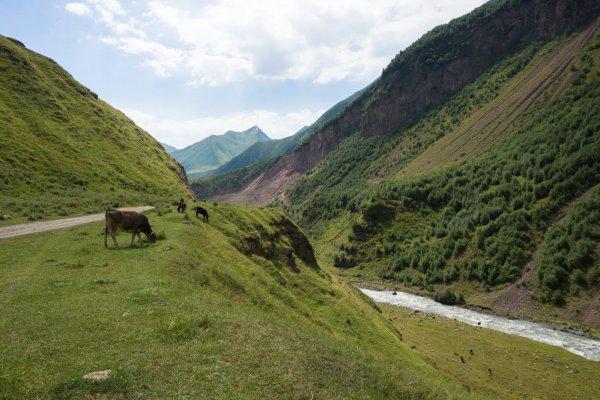 dolina truso, truso valley, kazbek